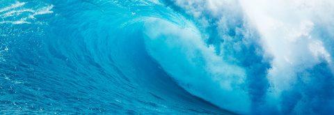 Somos fluídos e adaptáveis, surfamos a onda de cada cliente!